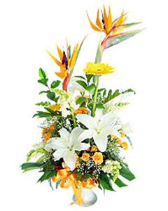 Mixed bouquet of white lilies & strelitzia