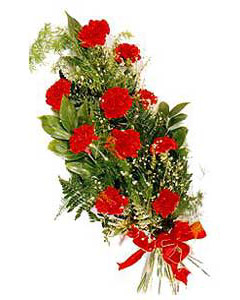 Bouquet of red carnations
