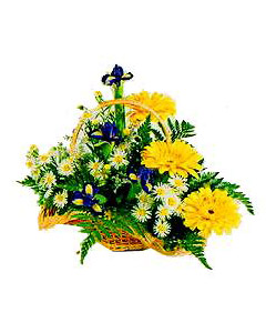 Wonderful summer basket