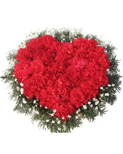 Carnation heart