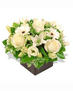 Mixed White Flowers in a Vase