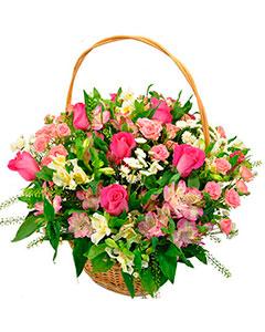 Basket May song