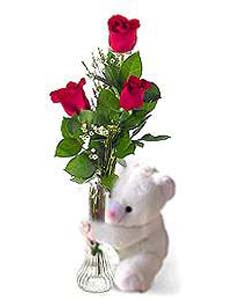 3 Red roses in a glass vase & small Bear