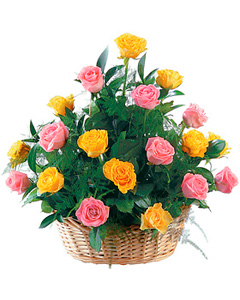 Wow! Rose Basket