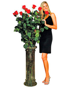 Giant Roses
