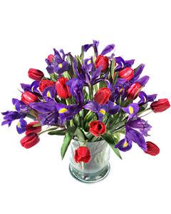 Seasonal bouquet of Tulips & Irises