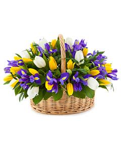Iris and tulip arrangement