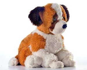 Dog Senbernar