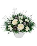 Christmas Gift White Roses