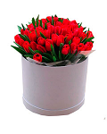 Red Tulips in a Round Box