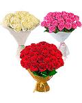 Week of roses
