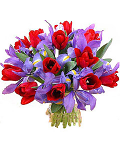 Iris & Red Tulip Bouquet