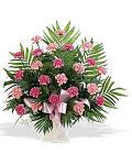 Arrangement of pink carnations