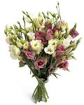 Sight Bouquet