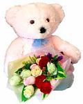 A Beary Cute Friend