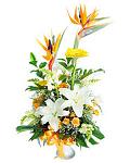 Mixed bouquet of white lilies & strelitzia